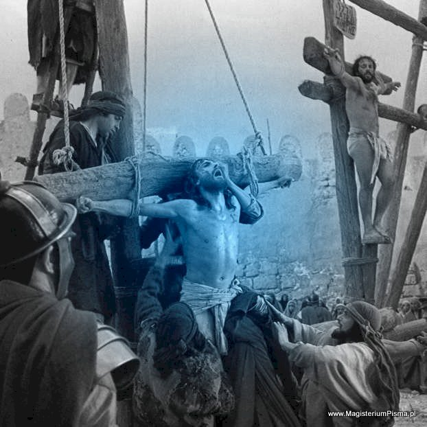Jak długo Jezus umierał ? Jak długo musiał nieść krzyż ? Ile ważył krzyż, na którym skonał Jezus Chrystus? Z jakiego drzewa zrobiono krzyż Jezusa Chrystusa?